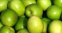 jujuba, ジュジュベ、青りんご、ミャンマー、モーラミャイン