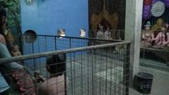 Buddha reclinado en construccion sleeping big buddhaの中には、パゴダがあります。また、モニュメント、博物館的なものがあります。