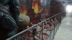 モーラミャイン 寝大仏の中 パゴダの写真 Win Sein Taw Ya Reclinado En Construccion Sleeping Big Buddha Pagoda Photo