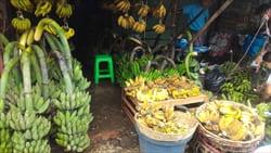 ミャンマーのフルーツ、バナナ、モーラミャイン・トラベル・インフォメーション