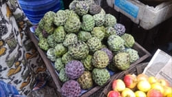 シャカトウ、Sugar Apple, モーラミャイン、ミャンマー、シュガーアップル